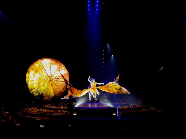 cirque du soleil musician